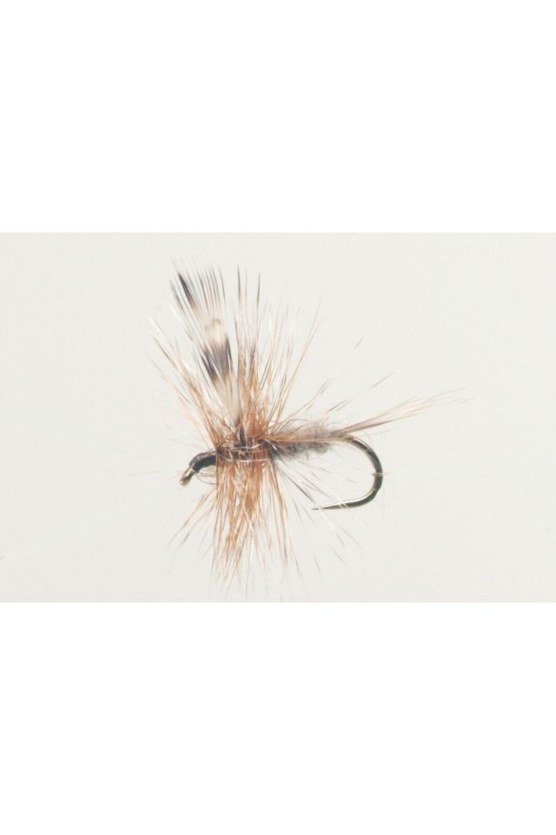 The Classic Adams Fly