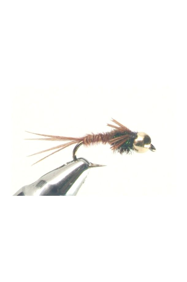 Gold Tungsten BH Pheasant Tail Nymph